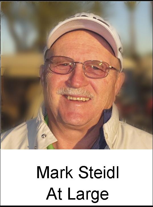 Mark Steidl